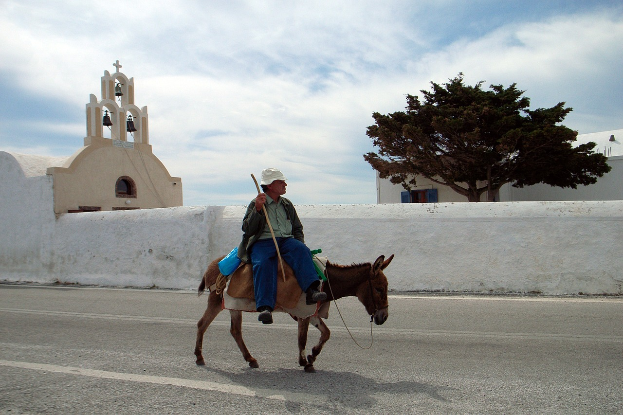 Things to avoid in Santorini - Riding a donkey