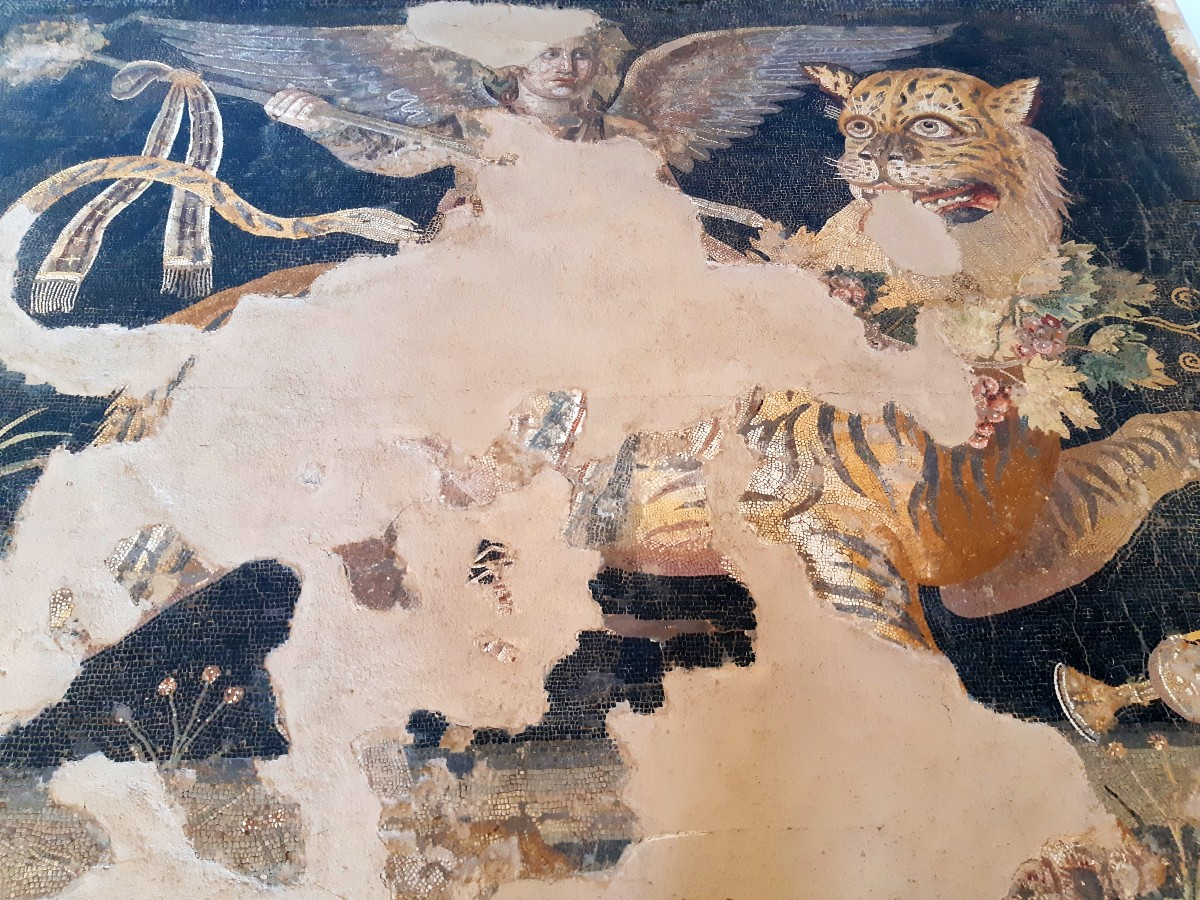 A mosaic in the Museum of Ancient Delos