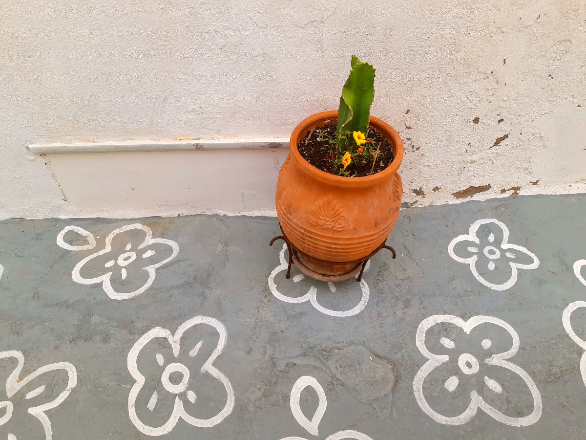 A flower pot in Chorio, the main town in Kimolos