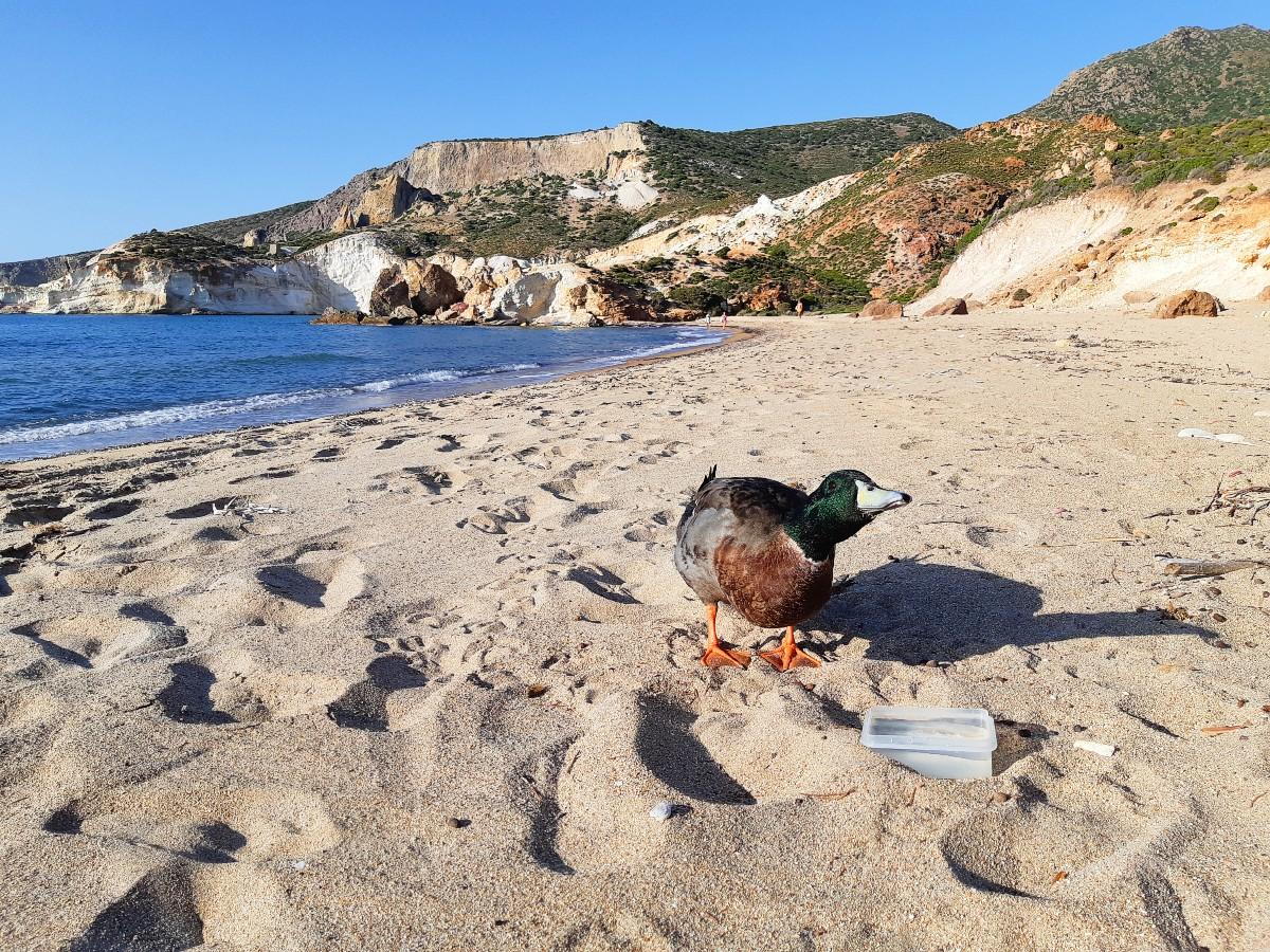 Beach of Agios Ioannis in Milos Greece