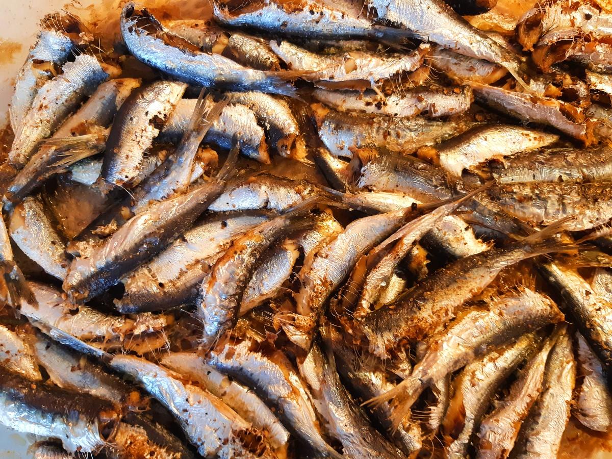 Food of Greece - Grilled sardines