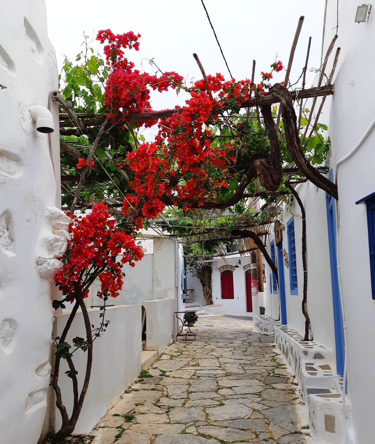 Visit the main town in Amorgos