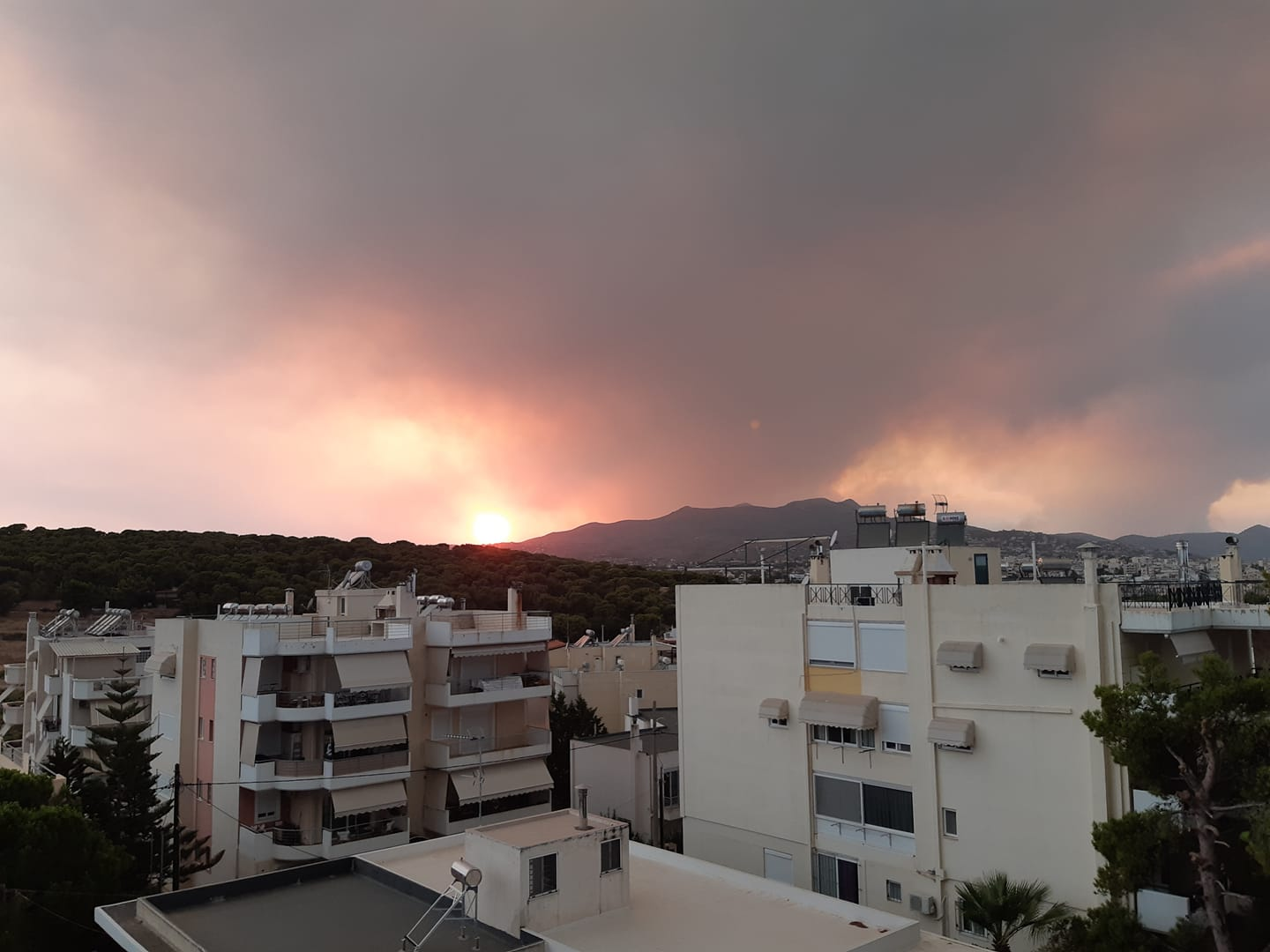 How to help for the wildfires in Greece summer 2021